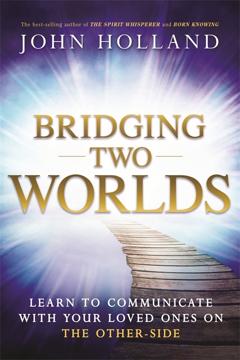 Bild på Bridging Two Worlds