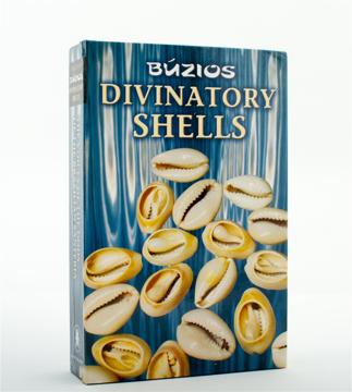 Bild på Divination Shells Kit