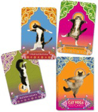Bild på Cat yoga postcards