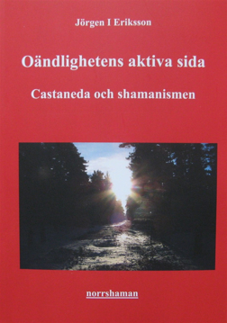 Bild på Oändlighetens aktiva sida - Castaneda och shamanismen