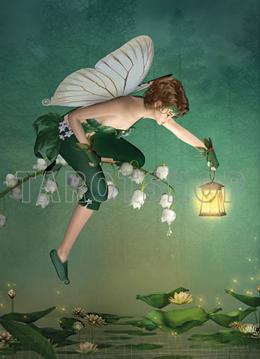 Bild på Magic Fairy
