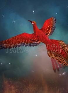 Bild på Magic Phoenix (13x18 cm)