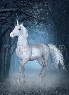 Bild på Magic Unicorn (13x18 cm)