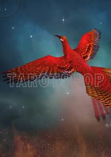 Bild på Magic Phoenix (21x30 cm)