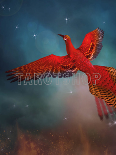 Bild på Magic Phoenix (30x40 cm)