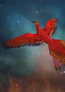 Bild på Magic Phoenix (50x70 cm)