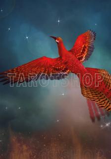 Bild på Magic Phoenix (70x100 cm)