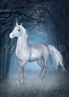 Bild på Magic Unicorn (21x30 cm)