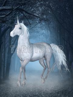 Bild på Magic Unicorn (30x40 cm)