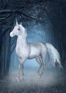 Bild på Magic Unicorn (50x70 cm)
