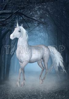 Bild på Magic Unicorn (70x100 cm)